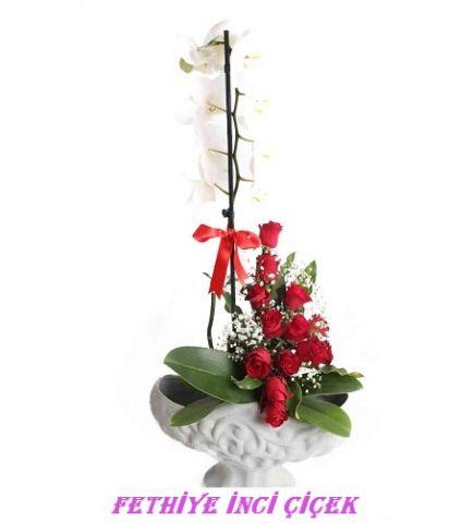 Özel Vazolu Orkide